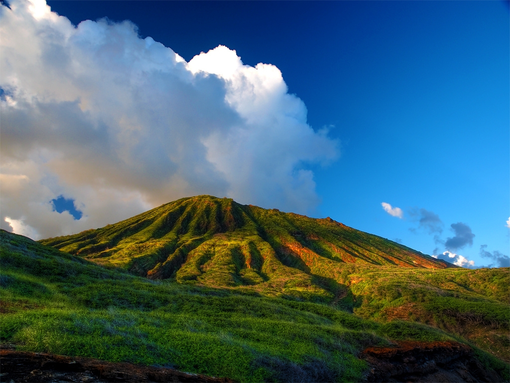 Live In Kauai Or Big Island